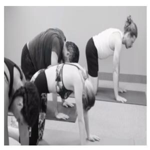 yoga students doing yoga poeses